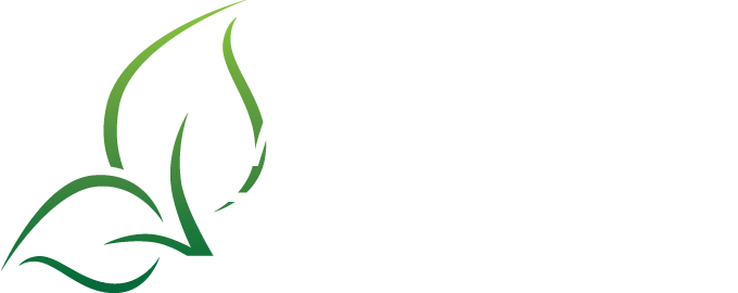 Logo Martin Twaalfhoveniers